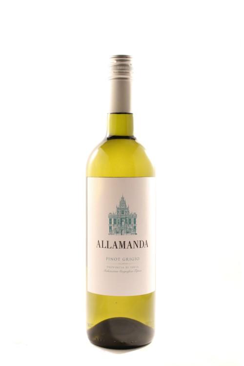 Allamanda-Pinot-Grigio-Italy-2017