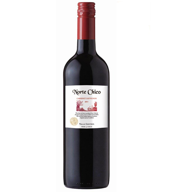 Norte-Chico-Cabernet-Sauvignon-Central-Valley-Chile-2015
