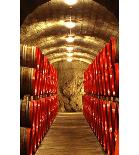 disznoko cellars